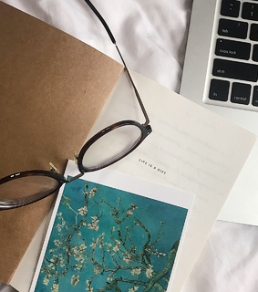 study, aesthetic and journal
