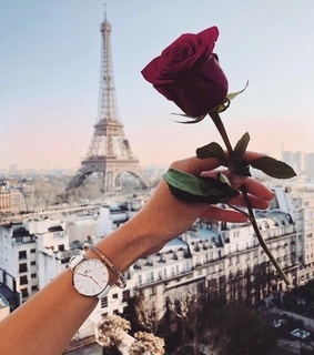 torre eiffel, pars and flower