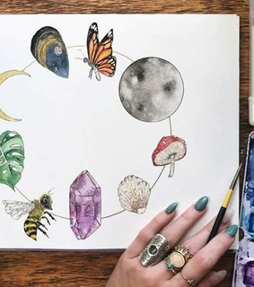 moon, plant and crystal