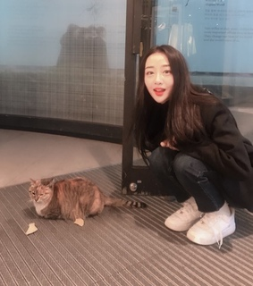 icons, gg and loona
