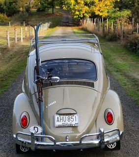 beetle, autumnal and vw
