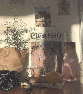 photography, aesthetic and picasso