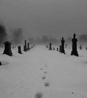 black and white, snow and pale