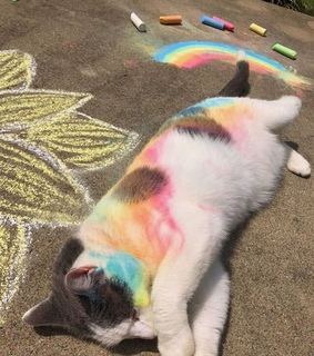 chalk, photo and color