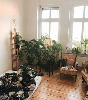 apartment, white and plants