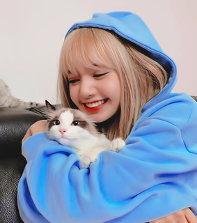 kpop icons, lisa and kpop