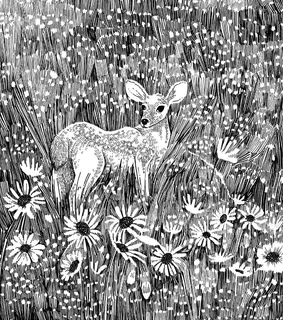 black and white, deer and is