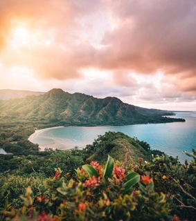 travel, oahu and nature