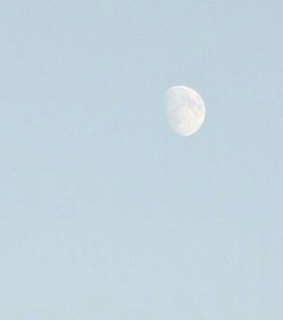 pale, light and moon