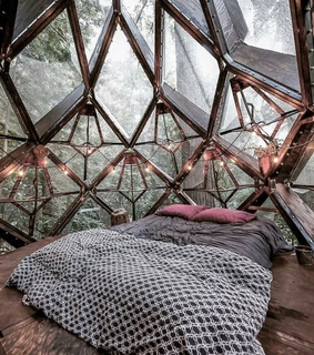 decor, forest and bedroom