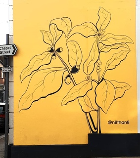 flowers, travel and art mural