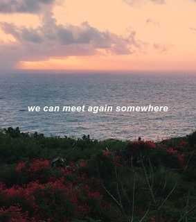 somewhere, red and meet again