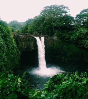 waterfall, relax and palm trees