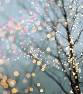 spark, shiny and branches