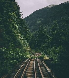 train, view and magnificent