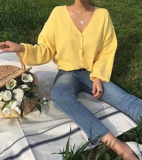 yellow, white roses and picnic