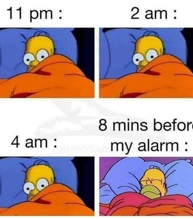 insomnia and homer
