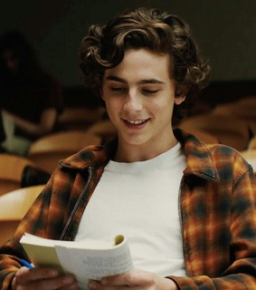beautiful boys, beautiful hair and timothee chalamet