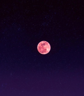 moon, future and pink
