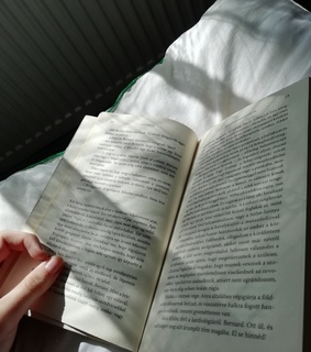 book, winter and reading