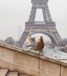 the eiffel tower, cute and puffy