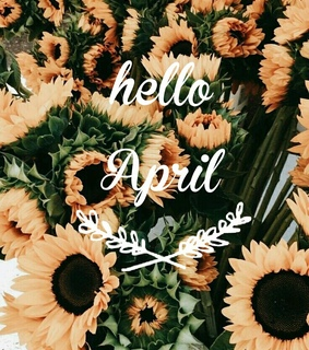 hello april, april and yellow
