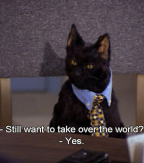 tumblr, world domination and sabrina the teenage witch