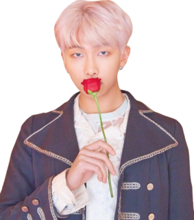 kpop png, bts png and namjoon png