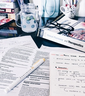 motivation, organized and studying