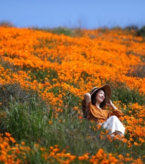 orange flowers, spring and woman