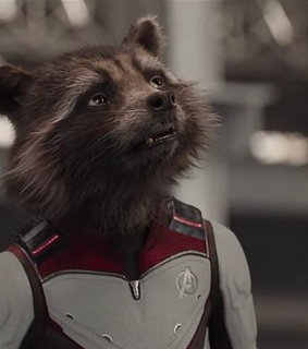 guardians of the galaxy, bradley cooper and rocket