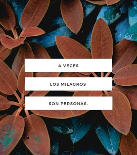 love, milagro and frase