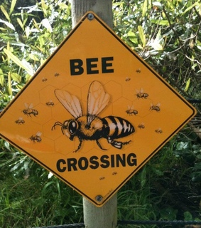 sign, bush and bee