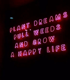 neon signs, happy and happy life