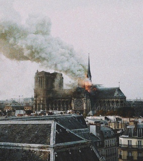 francia, notre dame and burn
