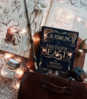 reading, wand and fantasticbeasts