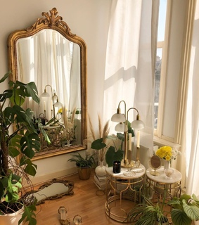 mirrors, decor and plant