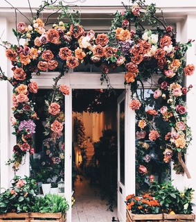 london, flowers and wisteria