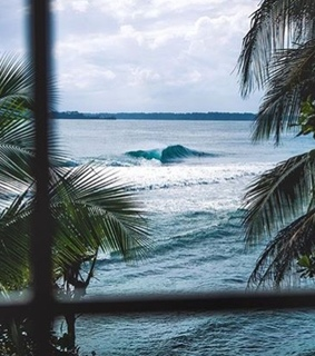 waves, tropical and surfboard