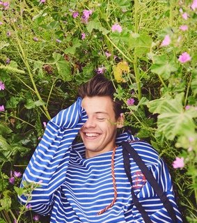 harry styles icons, harry styles and sign of the times