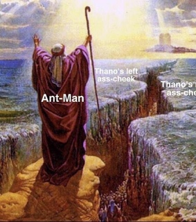 memes, funny and ant man