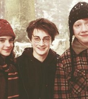 ron weasley, hermione and harry potter