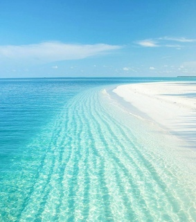 shore, beach and turquoise
