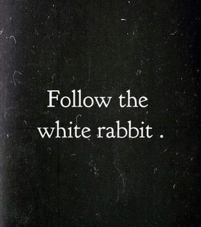 quotes, alice in wonderland and white