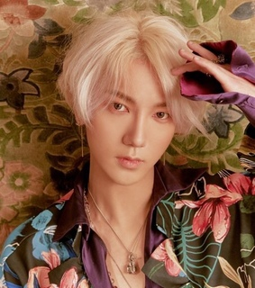 kpop idol, lo siento and yesung