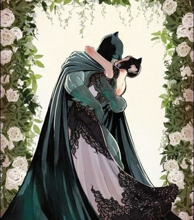 DC, wedding and catwoman