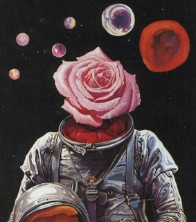 astronaut, rose and space