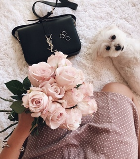 photo, flowers and glamour