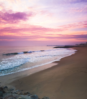 pink, sea and purple