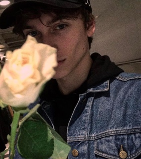 roses, tumblr boy and white roses